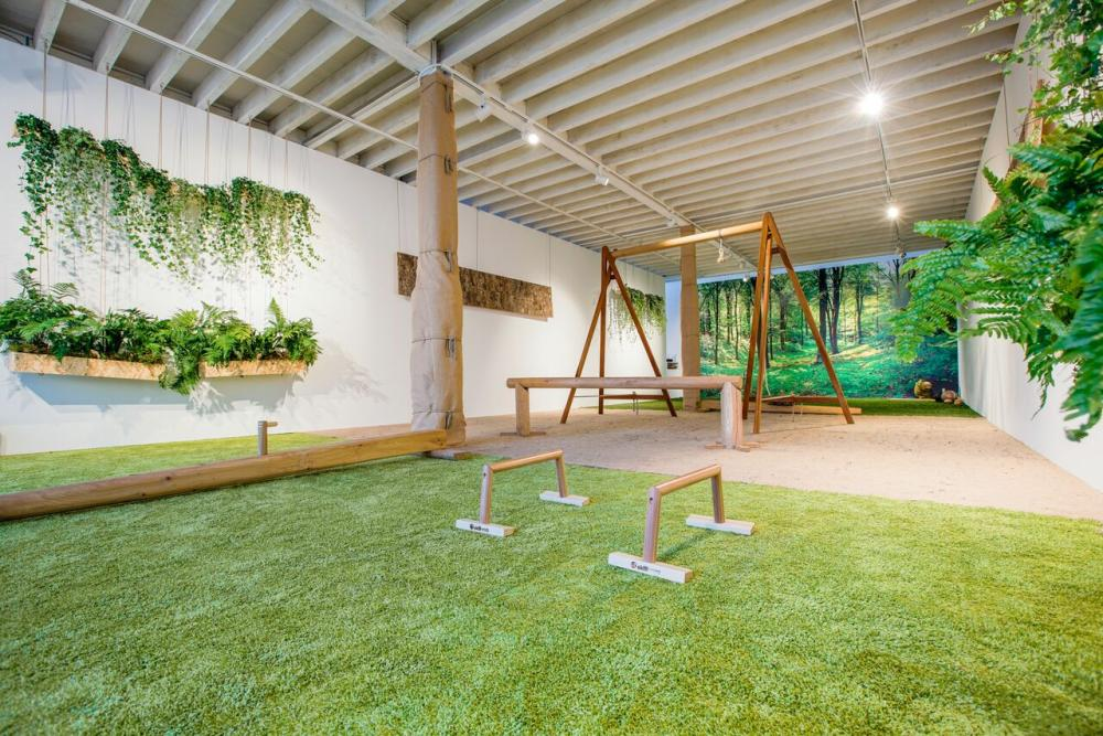 Biofit indoor gym uses only natural materials, such as gym equipment handcrafted of English oak, and has walls covered in hanging plants.